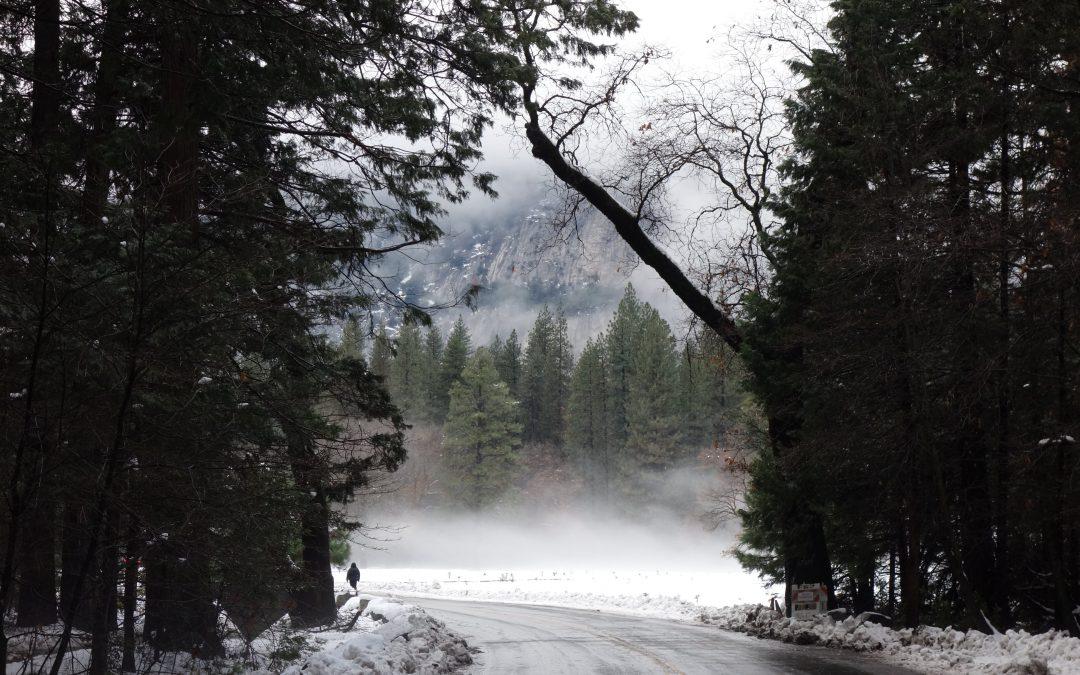 Day 5: Yosemite, the gathering of spirit