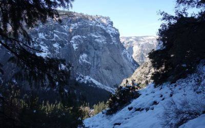 Day 6: Yosemite, the gathering of spirit II